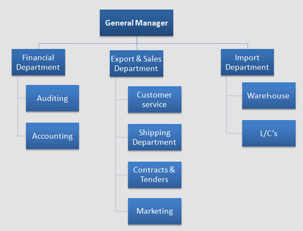 organizational structure of wal-mart essay